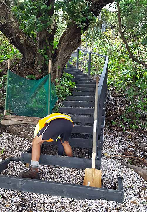 Constructing external steps in Auckland